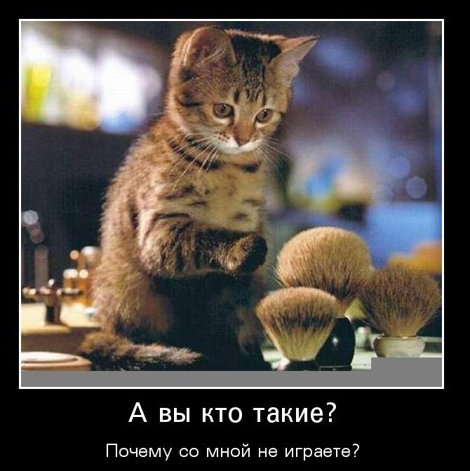 images_1055.jpg