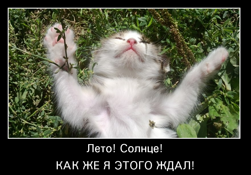 http://www.ademotivatory.ru/pics_max/images_1178.jpg
