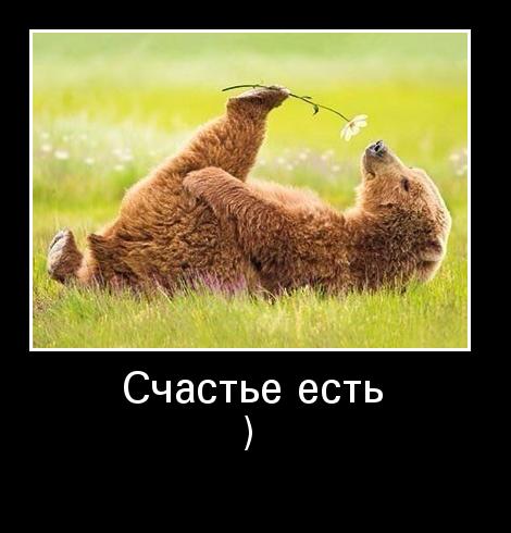 http://www.ademotivatory.ru/pics_max/images_1283.jpg