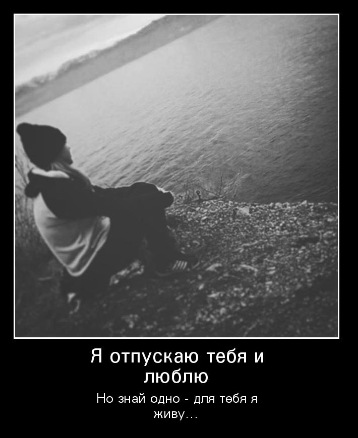 я тебя отпускаю картинки