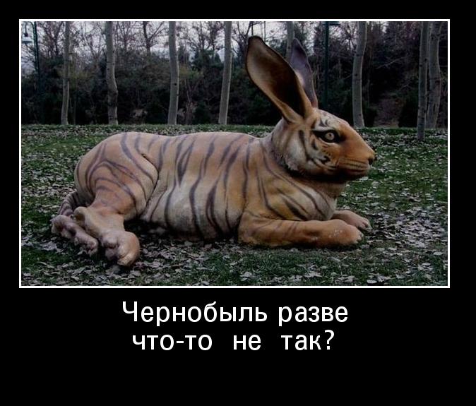 http://ademotivatory.ru/pics_max/images_804.jpg